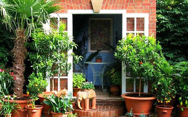 Крыльцо для частного дома: 15 идей дизайна и декора.