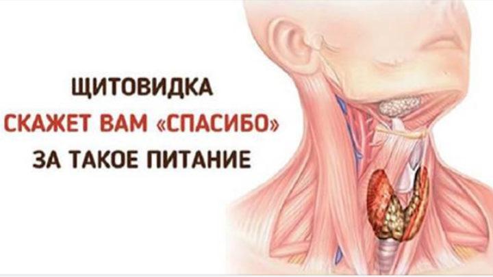 Как защищать щитовидную железу полезной и вкусной едой?