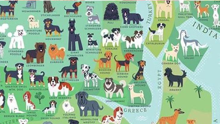 Карта происхождения пород собак