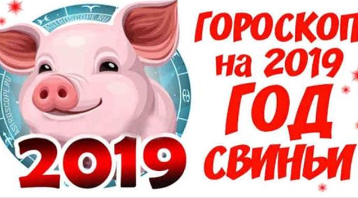 Самый точный гороскоп на 2019 год миролюбивой Свиньи для каждого знака Зодиака