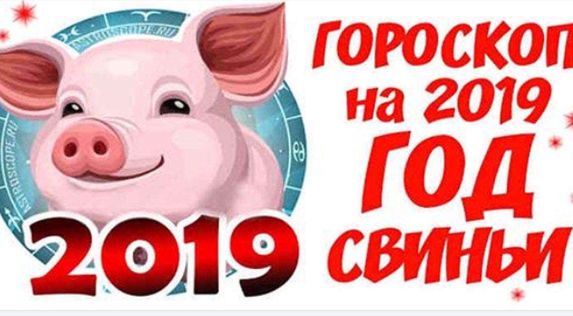 Точный гороскоп на 2019 год свиньи