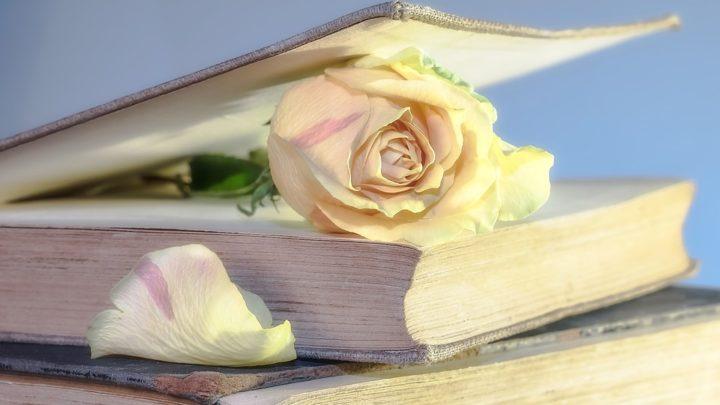 29 потрясающе правдивых цитат о жизни, любви и счастье